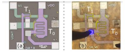2T pixel circuit, before and after micro-LED transfer on a:SI (University of Waterloo, 2019)