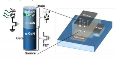 Vertically integrated GaN nanowire FETs and InGaN LEDs (Rochester Institute of Technology)