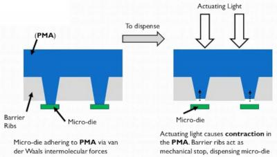 VerLASE microLED transfer process scheme